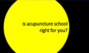 acupuncture school opening series